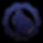 CTO/CIO Services