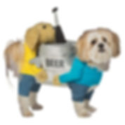 Small dog wearing a beer keg costume