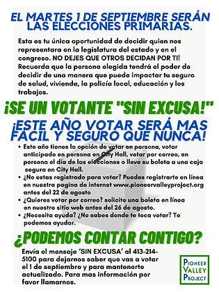 PVP Voter Outreach Flier 072920 (5).jpg