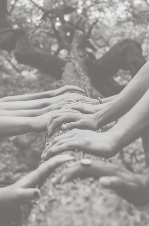 hands on tree.png