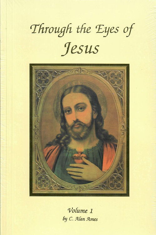 Through the Eyes of Jesus - Volume 1