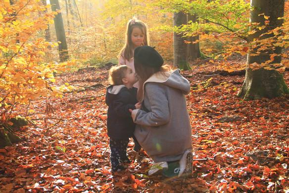 Promenons nous dans les bois... avec La Halle!