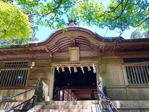 Fresh Greenery at Atago Shrine