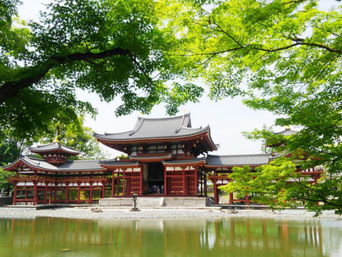 Fresh Greenery at Byodoin Temple