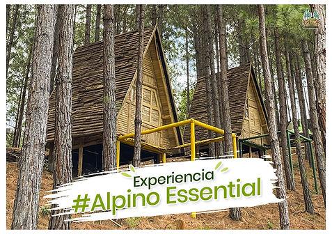 alpino essential-min.jpg