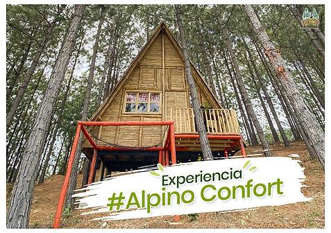 alpino confort-min.jpg