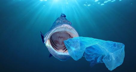 Mundo de plástico: Orígenes, tipos y efectos.