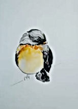 Robin watercolor.jpg