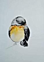 Robin watercolor.jpg