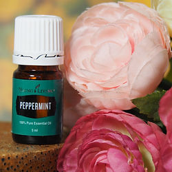 huile essentielle young living peppermint
