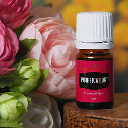 huile essentielle young living purification