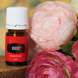 huile essentielle young living digize