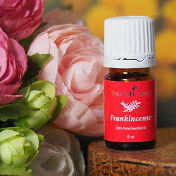 huile essentielle young living frankincense