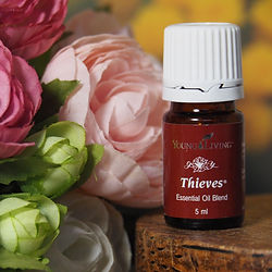 huile essentielle young living thieves