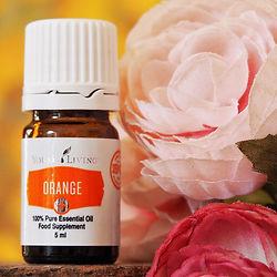 huile essentielle young living orange +