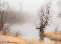 River Fog Gray