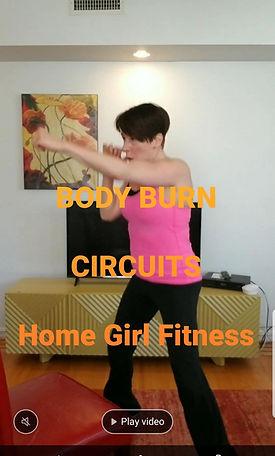 BodyBurnCircuitsCover.jpg
