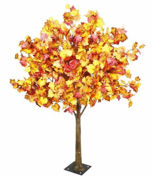 6ft_Autumn_Tree.jpg