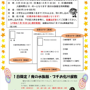 【受付終了】8/10(土)~8/11(日)お泊り水族館