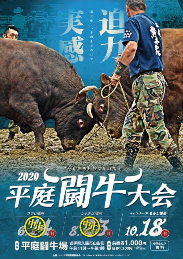10月18日開催平庭闘牛大会もみじ場所