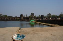 ormeau_à_Angkor_Vat.jpg
