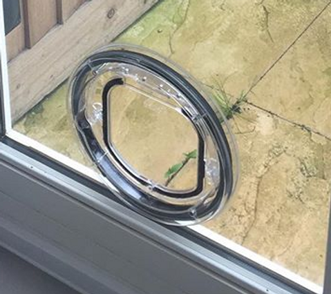 The Prefect Cat Flap For A Sliding Patio Door Cat Out Of Glass