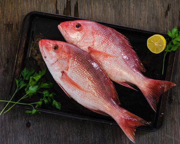 Red Snapper (price per lb whole fish)