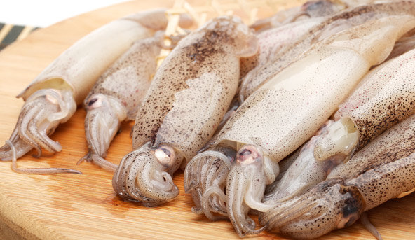 Frozen Squid (price per lb)
