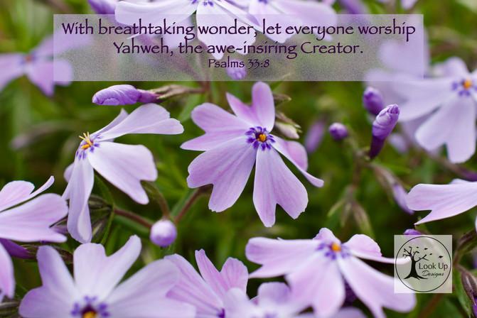 Psalms 33:8
