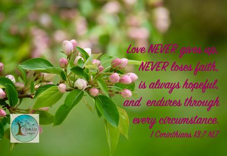 Love is...1 Corinthians 13_7
