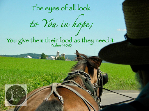 Look to God for your hope!