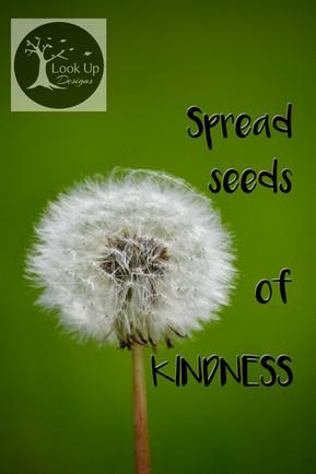 Seeds of Kindness