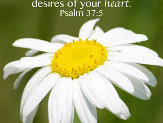 Want the Desires of Your Heart?