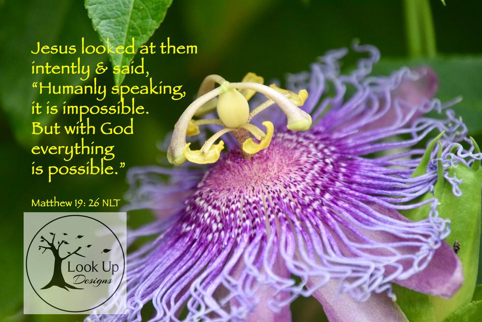 Matthew 19:26 NLT