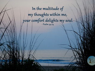 Your Comfort is a True Delight