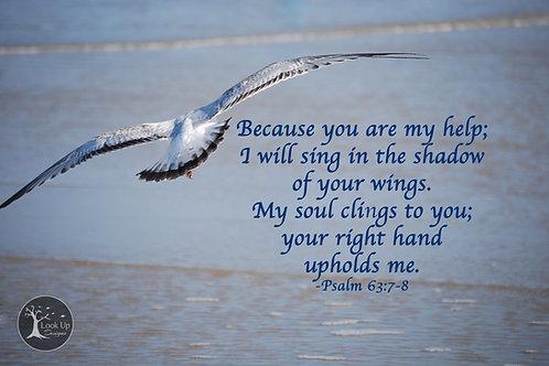 Under His Wings 8x10 Print