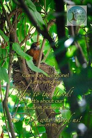 Psalms 95:1