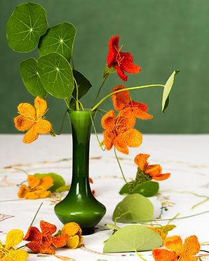 Flower Hero Nasturtium.jpg