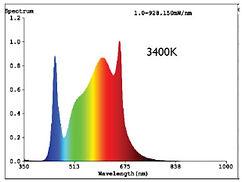 3400K Spectrum Test Report