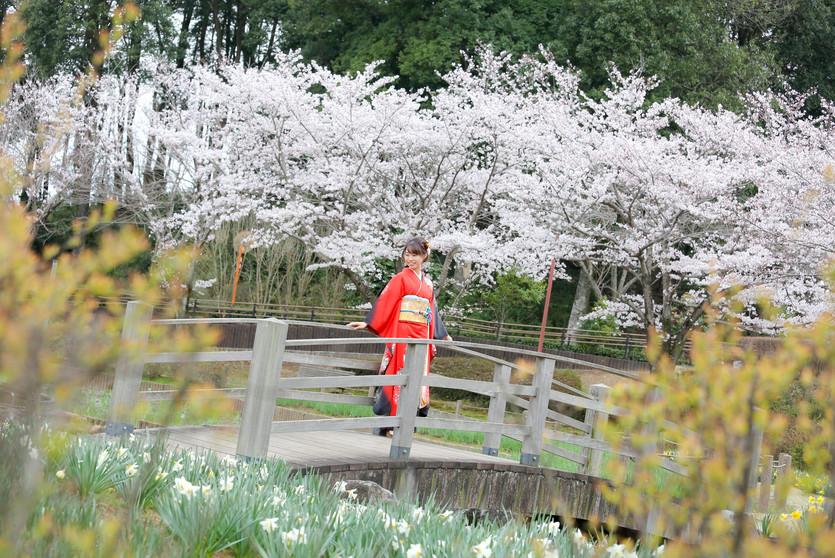 成人式|秋山写真工房|ウエディングヒルズアジュール|守谷(つくば近郊)