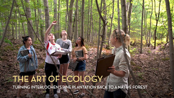 The Art of Ecology: Turning Interlochen's Pine Plantation Back into a Native Forest