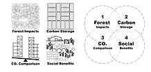 Sustainable Wood for Cities impact areas