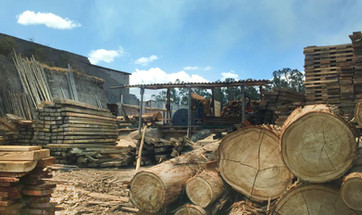Local Indigenous Sawmill in Quito.jpg