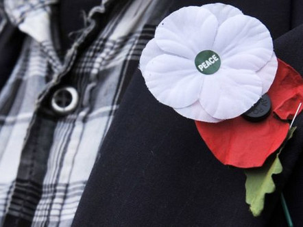 How Should We Remember? The Controversy of Remembrance Day Poppies