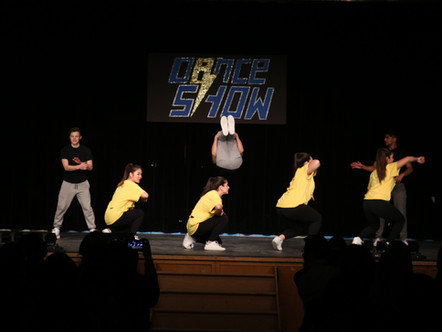 Gallery: Dance Show 2019