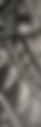 Screen Shot 2019-01-04 at 8.46.16 PM.png
