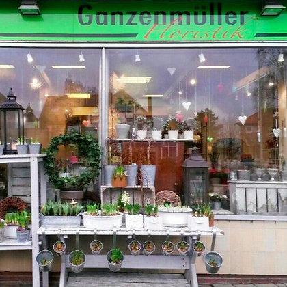 Ganzenmüller Floristik