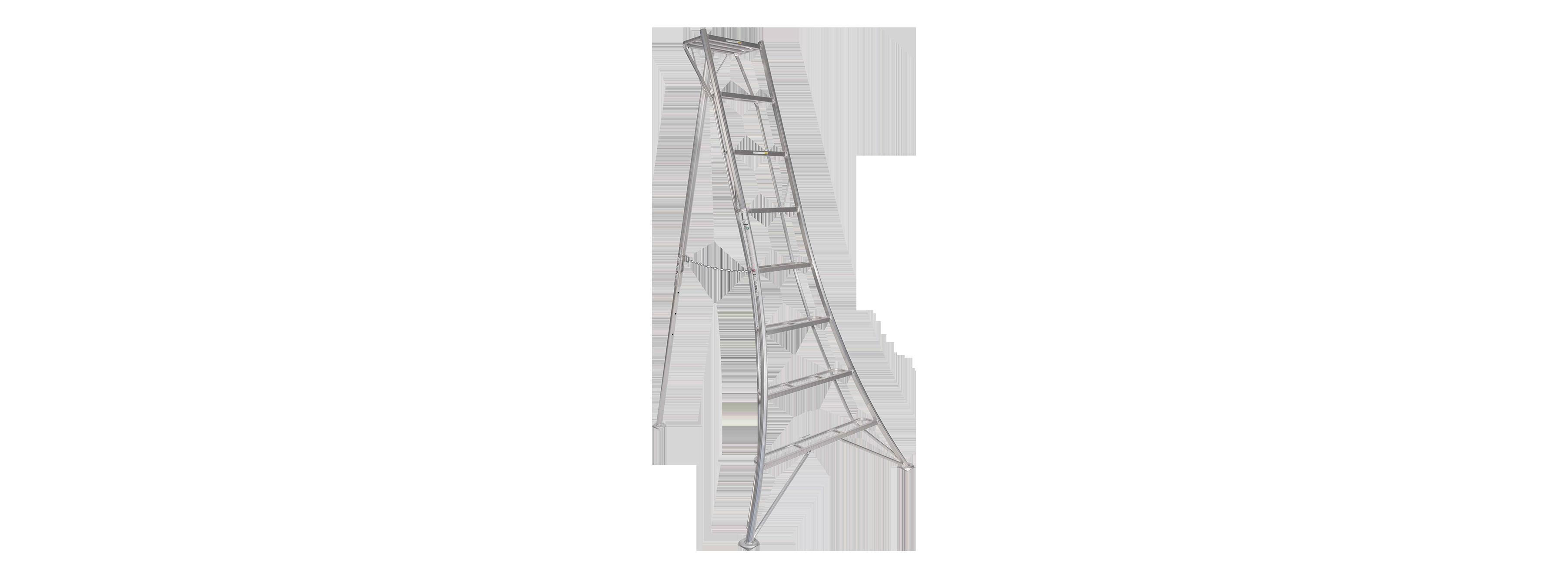 Hasewawa Ladders Button solo