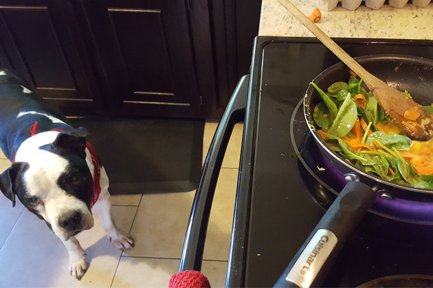 Spinach, Carrots, Eggs, Chicken. YUM!