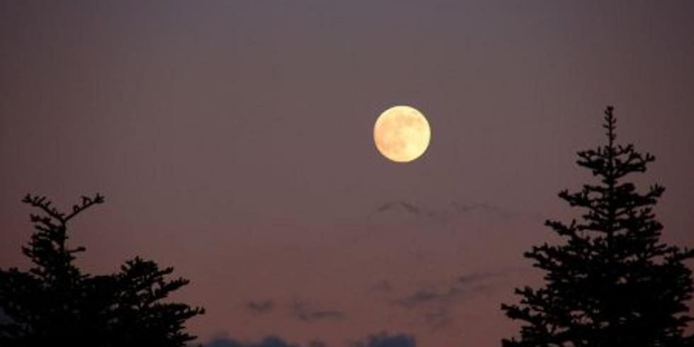 Lever de pleine Lune le 20 octobre 2021